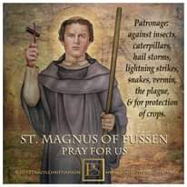 Image may contain: 1 person, text that says 'Patronage: against insects caterpillars hail storms, lightning strikes snakes, vermin, the plague, & for protection crops. ST. MAGNUS OF FUSSEN PRAY FOR US ©2017TRACYLCHRISTIANSON www.PORTRAITSOFSAINTS.COM'