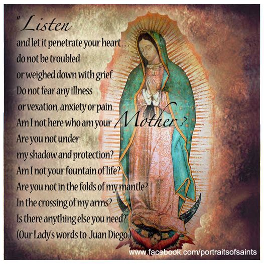 Happy Feast Day  Our Lady of Guadalupe  Feast Day: December 12  Our Lady of Gu...